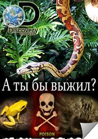 А ты бы выжил?