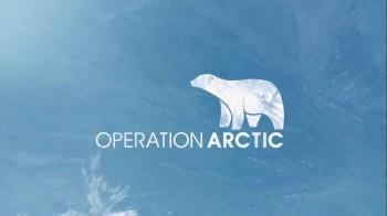Секс арктика