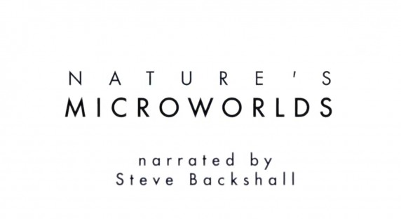 BBC Микромиры / Nature's Microworlds 10. Йеллоустон (2012)