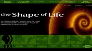 Форма Жизни / The Shape of Life - Завоеватели HD