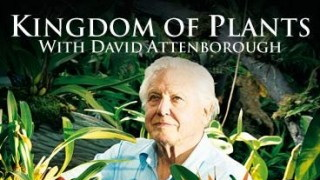 BBC Царство Растений / Kingdom of Plants 3. Выживание (2012) HD