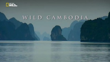 Дикая природа Индокитая Дикая Камбоджа / National Geographic. Wild Cambodia (2015)