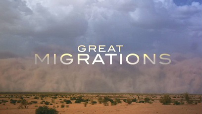 Великие миграции 1 серия. Рожденные для путешествий / Great Migrations (2010)