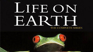 BBC Жизнь на Земле 11 серия. Охотники и жертвы / Life on Earth (1979) HD