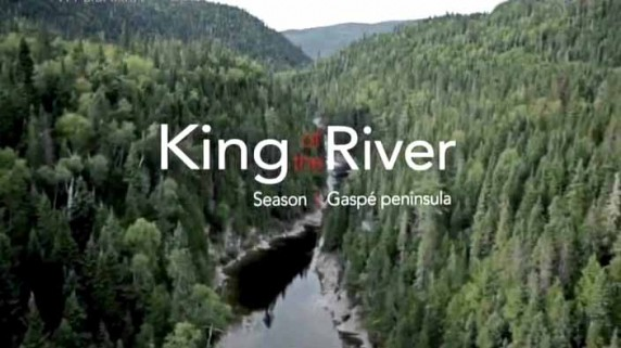 Король реки 1 серия / King of the River (2015)