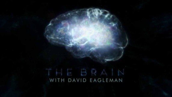 Мозг с Дэвидом Иглманом 3 серия / The Brain with David Eagleman (2015)