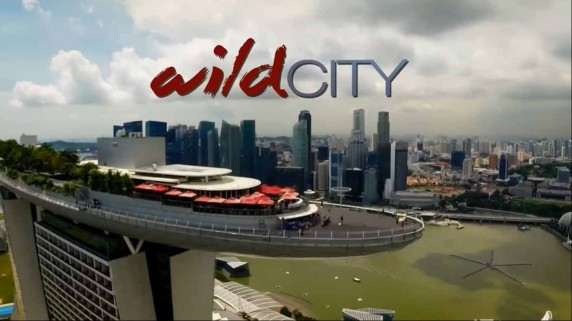 Дикий город 2 серия. Городская природа / David Attenboroughs: Wild City (2015)