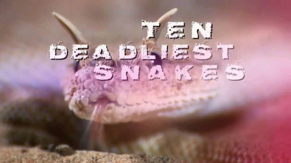 Десять смертельно опасных змей 3 серия. Мексика / Ten deadliest snakes (2016)