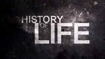 история жизни скачать торрент - фото 9