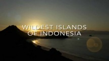 Дикая природа Индонезии 3 серия. Край вулканов / Wildest Islands Of Indonesia (2016)