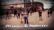 На свободу с питбулем 8 сезон 7 серия. Доброта незнакомцев / Pit Bulls and Parolees (2018)