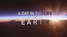 День из жизни Земли 2 серия / A Day in the Life of Earth (2018)